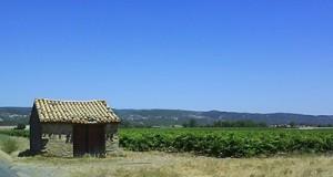 Varme, tørre, lavendelduftende og cikadestøjende Languedoc