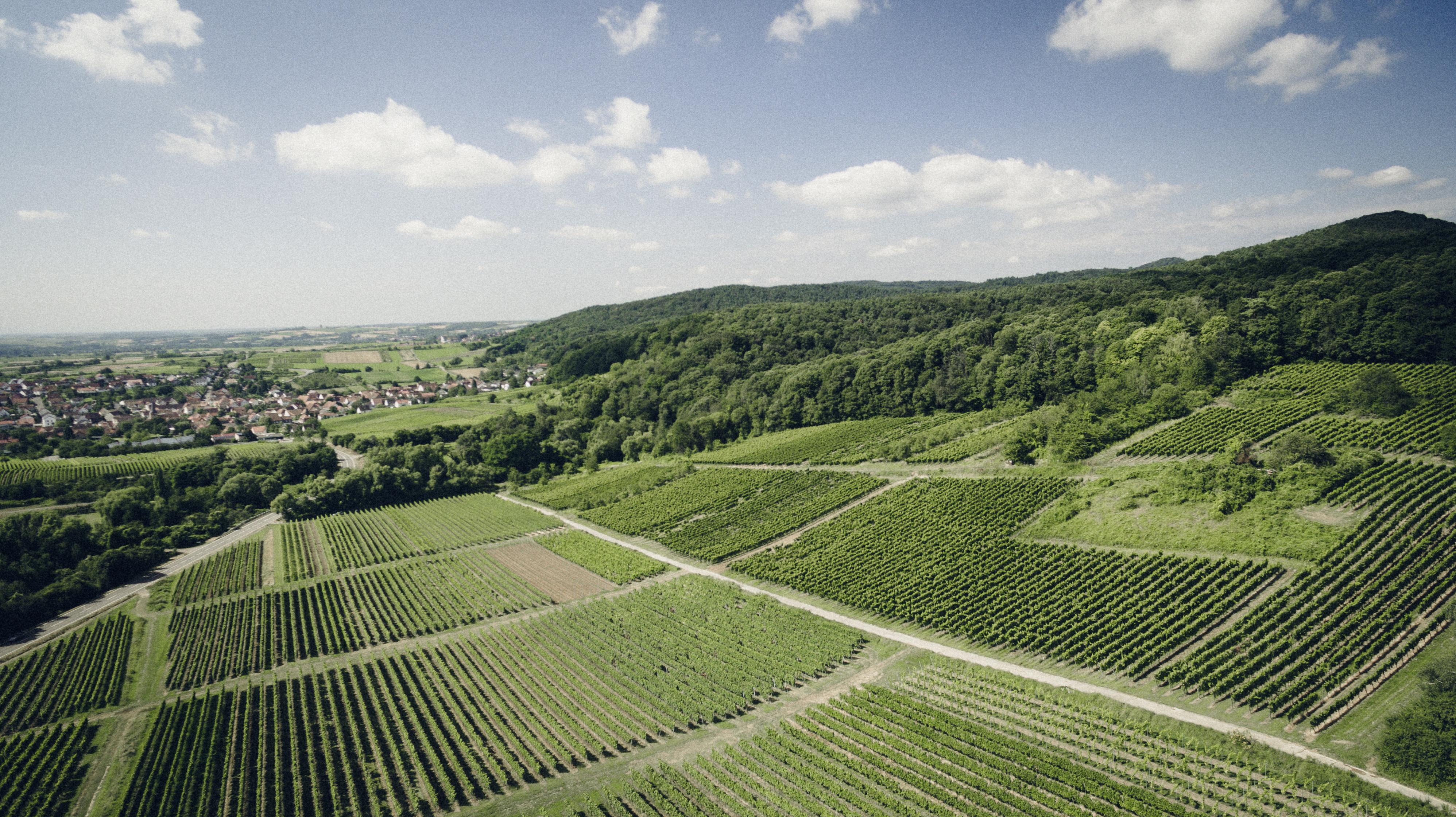 vinkort over østrig