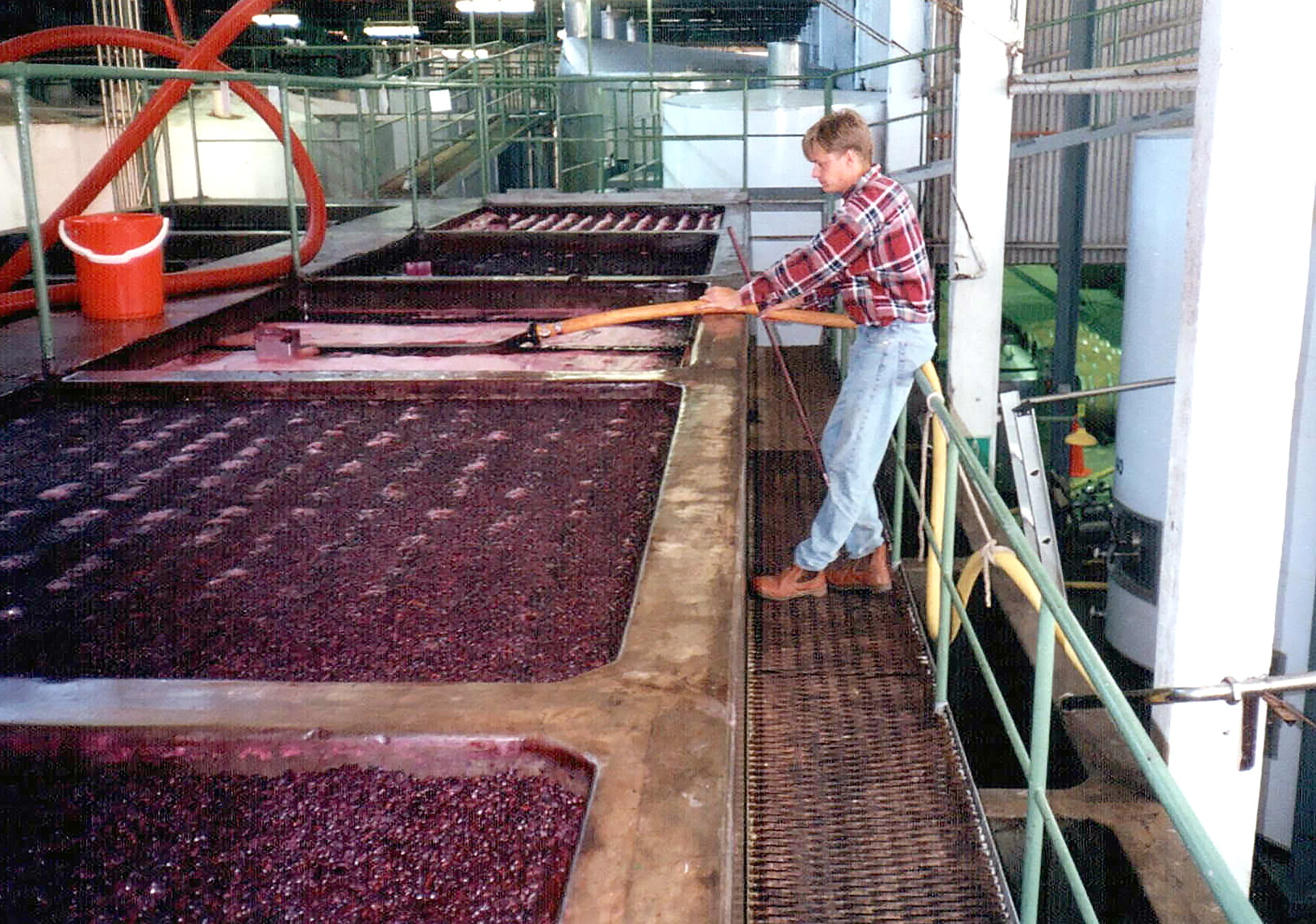 Jacob Ruby laver vin