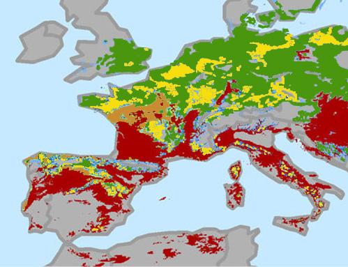 Klimaforandringernes indflydelse på Europas vinmarker i 2015