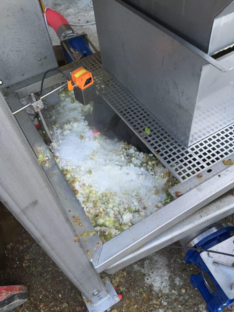 cryo macereing forberedes. Druerne blandes med tøris