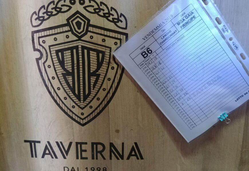 Taverna Wines i Barbaresco