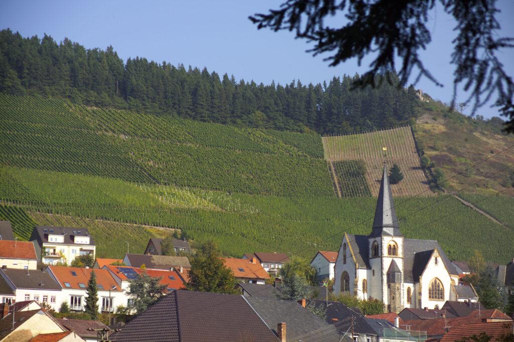 Vinmarken Ockfener Bockstein i den sydlige del af Saar-området