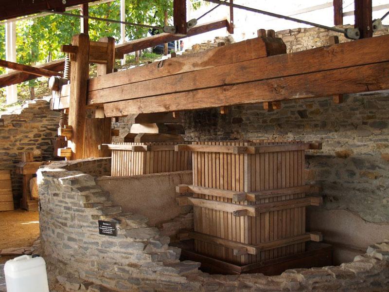 roman winery in Piesport