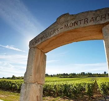 marken chevaliers-montrachet i bourgogne skaber noget af verdens flotteste chardonnay
