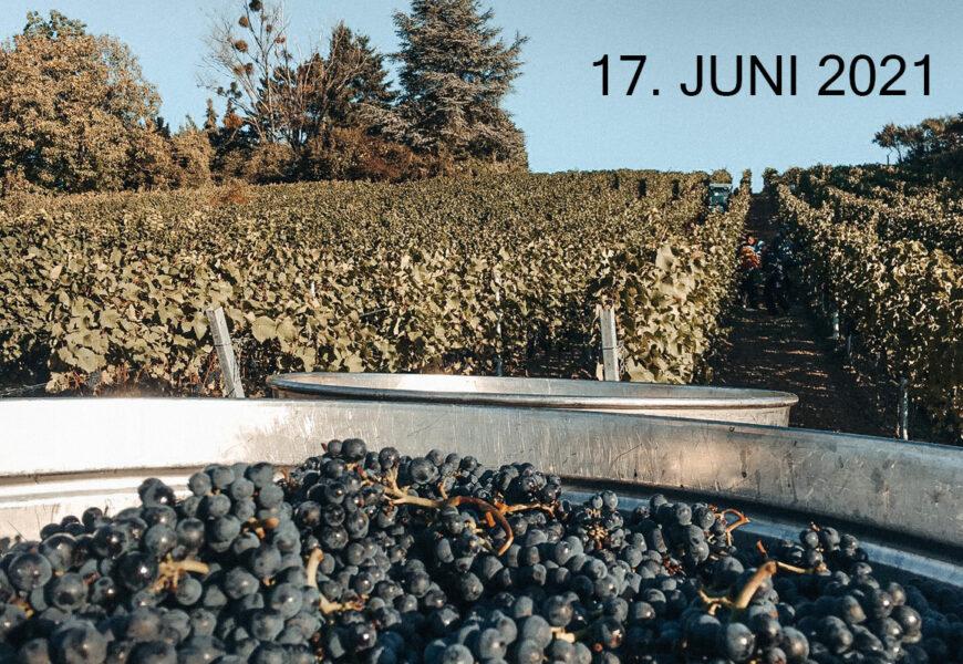 Smagning: Spätburgunder Mesterskaberne 2021