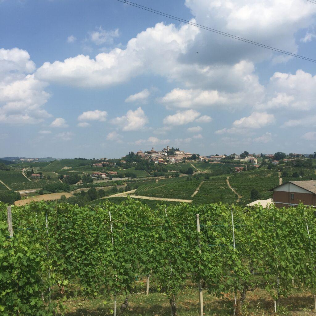 Byen Neive i vinområdet Barbaresco. Billedet er taget fra marken Gaia Principe, der ligger på et bakkedrag modsat byen